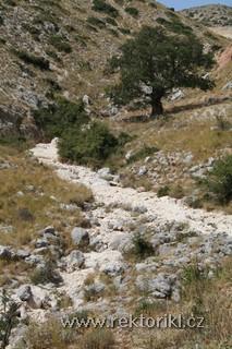 Cestou k Agios Paraskevi