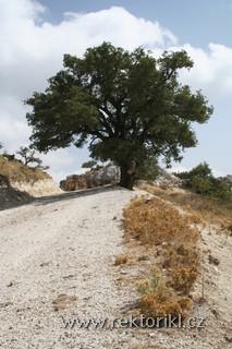 Agios Paraskevi