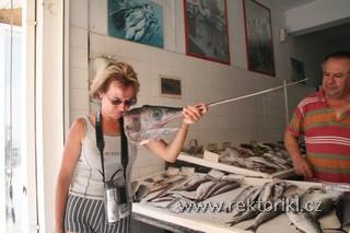 Obchůdek s rybami